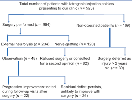 Sciatic Nerve Flow Chart Injection Related Iatrogenic Peripheral Nerve Injuries