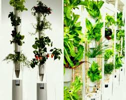 fullsize of beauteous full size living wall planter uk garden outdoor plants favored hanging planters noticeable