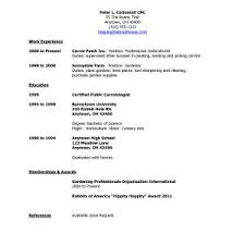 Sample Resume No Work Experience High School Students New Imposing ...