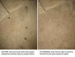 natural carpet cleaning with sal suds