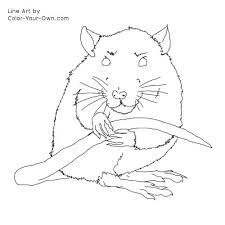 Small Picture Pet Rat Coloring Page