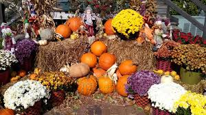Image result for fall fair