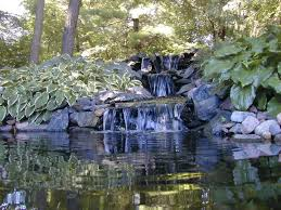 Small Picture 58 best Water Gardens images on Pinterest Water garden Garden