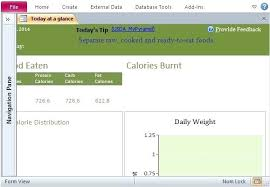 Access 2013 Templates Maintain A Healthy Active Lifestyle By Keeping Daily Records This