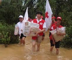 Image result for chữ thập đỏ đà nẵng