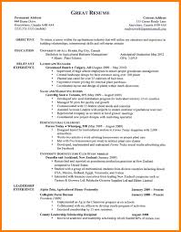 Example Of A Personal Profile On A Resume personal profile format in resume beautiful resume personal profile 43