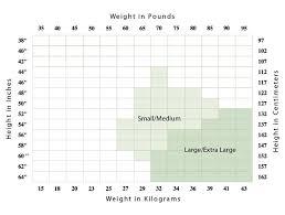 34 Particular Capezio Daisy Size Chart