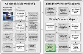 Phenology Chart University Of Calgary Remote Sensing Of Understory Plant