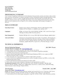 Resume Ability Summary Examples Elegant Resume Template 7 Best