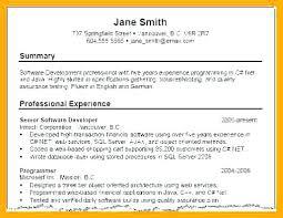 Resume Profile New Resume Profile Summary Resume Profile Summary Examples Of