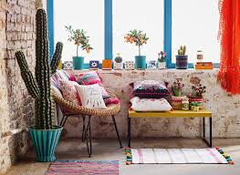 a cactus plant is low maintenance and adds a great cinco de mayo vibe to any room image the 36th avenue