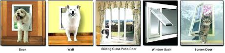 door with dog door door with dog door sliding door screen with dog door an error door with dog