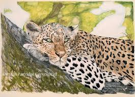leopard print african leopardwall art