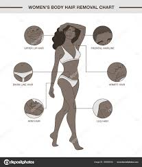 Womens Body Chart Infographic With Womens Body Hair Removal Chart Stock