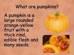 A Great Non Fiction Powerpoint All About Pumpkins Learn About The