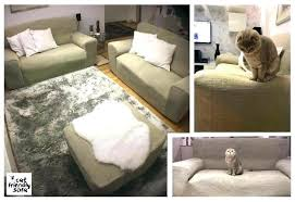 Top furniture covers sofas Sectional Sofa Best Furniture For Pets Medium Size Of Friendly Sofa Cat Proof Waterproof Pet Furniture Covers Animal Searchlinedatabaseco Best Furniture For Pets Medium Size Of Friendly Sofa Cat Proof