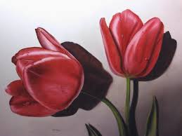 red red tulips a twin pair painting