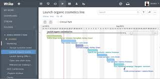 create a timeline using microsoft project