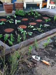 have you ever wanted to start a vegetable garden in the desert southwest arizona and thought man its too difficult you have tried to read a few books on