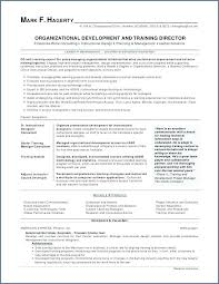 Google Drive Resume Templates Magnificent Google Drive Resume Template Directory Resume