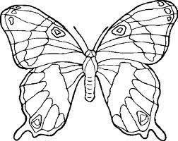 Vlinder Kleurplaat Stichting Natuur Landschap Zwijndrechtse Waard