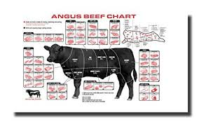 Cow Butcher Chart Handtao Beef Cuts Of Meat Butcher Chart Canvas Wall Art Beautiful Picture Prints Living Room Bedroom Home Decor Decorations Unstretched And No Framed