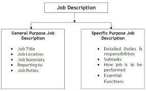 General and Specific Purpose of Job Description