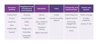 Aetna Medical Plan Comparison Chart Expat Social Determinants Report 2019 How Living Abroad