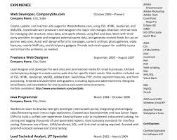 Google Docs Resume Templates Google Drive Resume Template 15