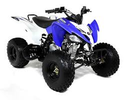 quad atv 250cc 4 times pantera style off road racing news 2014