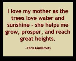 Mom Love Quotes Beauteous Love Quotes For Mom Hover Me