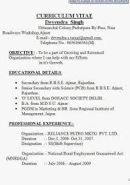 The Best Resume Builder Inspiration A Cv Example Sample Template Example OfExcellent Curriculum Vitae