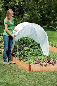 Small Picture Top 25 best Winter vegetable gardening ideas on Pinterest
