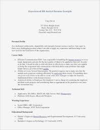 Personal Profile Resume Sample