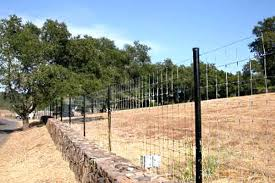 deer fence posts db w black pipe for sale w21