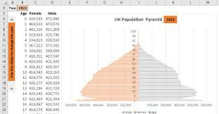 How To Make A Cohort Chart In Excel Population Pyramid Excel With Excel Master