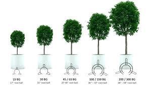 30 Gallon Plant Pot Planter Nursery Pots 5 Gal Dimensions
