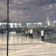 apple employees can t stop walking into the beautiful glass doors at new apple park campus the verge