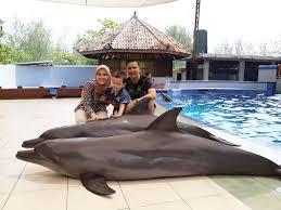 Tgl 29 agustus kemaren ane dapet perintah dari kantor pusat untuk meeting ke comal, pemalang. Review Lokasi Dan Tiket Masuk Batang Dolphin Center Pariwisataku