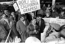 essay what s civil rights history out latinos sfgate united farm workers president cesar chavez carrying a sign calling for a boycott of california