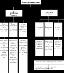 Государственная кадровая политика Реферат страница  Классификация кадров по основным сферам организации общества и основным уровням управления приведена на рис 1 2