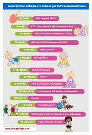 30 Free Immunization Vaccination Schedule Charts Word Pdf