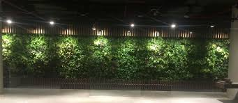green wall lighting. green wall at image by schaduf lighting c