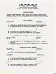 Rn Resume Template New How To Do Professional Examples Nursing Cv