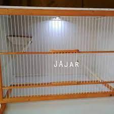 Burung kenari adalah burung yang terkenal karena kicauannya yang merdu. Murah Box Kandang Breeding Ternak Kenari Bongkar Pasang Best Quality Shopee Indonesia