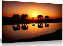 image is loading african sunset elephants nature wildlife canvas wall art  on african elephant canvas wall art with african sunset elephants nature wildlife canvas wall art picture