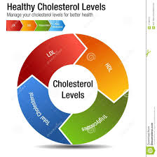 Cholesterol Chart Total Blood Cholesterol Hdl Ldl Triglycerides Chart Stock