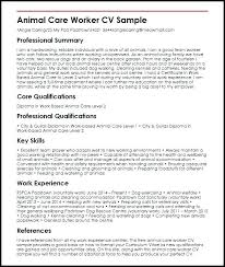 Examples Of Personal Profiles For Resumes Sample Personal Resume