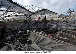 An IDF APC  Armed Personnel Carrier  passes through abandoned greenhouses  near the Israeli border