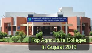 Colleges Of Agriculture Top Agriculture Colleges In Gujarat 2019 List Rating